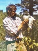 Vladimir Ivanovski with Short-toed Eagle chick